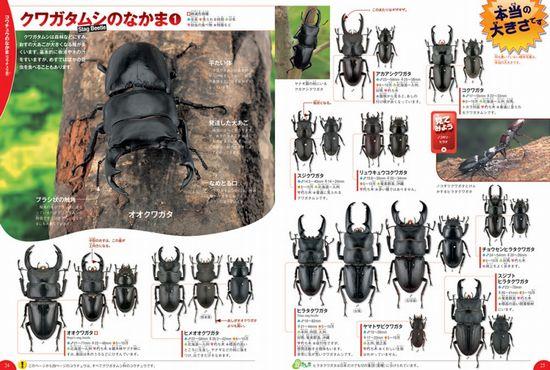 学研の図鑑LIVE 第1巻 昆虫