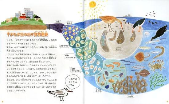 干がたは海のゆりかご -東京湾の海を守る-