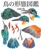 鳥の形態図鑑
