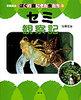 写真絵本 ぼくの庭にきた虫たち 3 セミ観察記