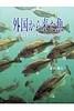 外国から来た魚