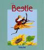 Beatle(カブトムシ)