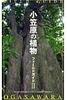 小笠原の植物フィールドガイド