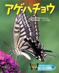 ドキドキいっぱい!虫のくらし写真館(10) アゲハチョウ
