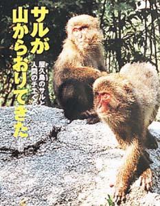 ポプラ社いきいきノンフィクション(8) サルが山からおりてきた