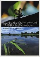 四季を彩る小さな命・日本の昆虫(今森光彦ネイチャーフォト・ギャラリー)