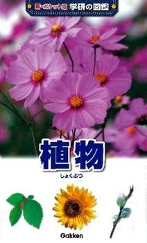 新ポケット版学研の図鑑 (2) 植物