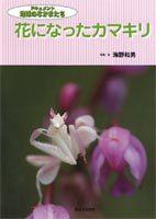 花になったカマキリ