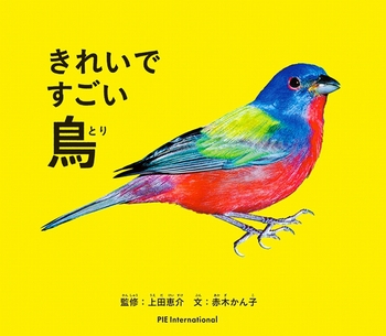 きれいですごい鳥