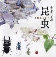 安永一正の昆虫