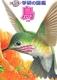ジュニア学研の図鑑 鳥