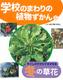 学校のまわりの植物ずかん(4) 冬ごしのすがたでさがせる冬の草花