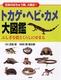 トカゲ・ヘビ・カメ大図鑑