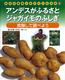 身近な植物と友だちになる本(6) アンデスがふるさとジャガイモのふしぎ