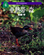 森の写真動物記(4) 亜熱帯の森