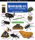 虫の飼いかた・観察のしかた(5) 雑木林の虫の飼いかた−カブトムシ・クワガタ・オオムラサキほか
