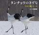 タンチョウのきずな 「日本の鶴」の一年