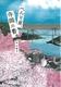 べんり屋、寺岡の春。