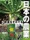 日本の農業 3野菜をそだてる