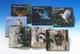 ネイチャーフォトストーリー 日本の野鳥 全5巻