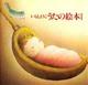 いもとようこ・うたの絵本(1)