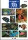 野外観察図鑑 4魚 改訂版