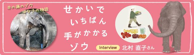 日本最高齢更新!井の頭のゾウ はな子の物語『せかいでいちばん 手がかかるゾウ』北村直子さんインタビュー