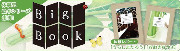 体験型絵本シリーズ創刊! 「Big Book」シリーズ『うらしまたろう』『おおきなかぶ』体験レポート