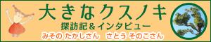 絵本に登場した「クスノキ」に会いに行ってきました!