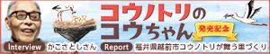『コウノトリのコウちゃん』かこさんインタビュー&コウノトリの里、越前市レポート
