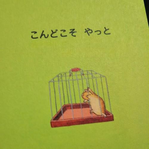 フラミンゴ・つかまっちゃったネズミちゃん、可愛すぎます〜