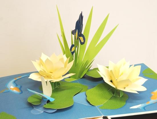 豪華版 お花のポップアップ(Paper Blossoms)