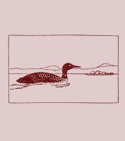 岩波少年文庫 シロクマ号となぞの鳥(上)