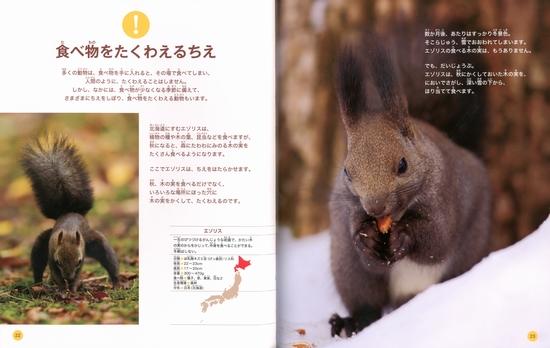 動物のちえ(1) 食べるちえ