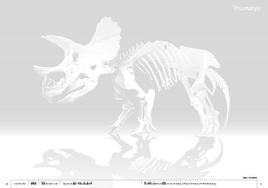 恐竜 骨ぬりえ