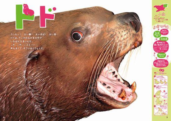 もっと!ほんとのおおきさ水族館
