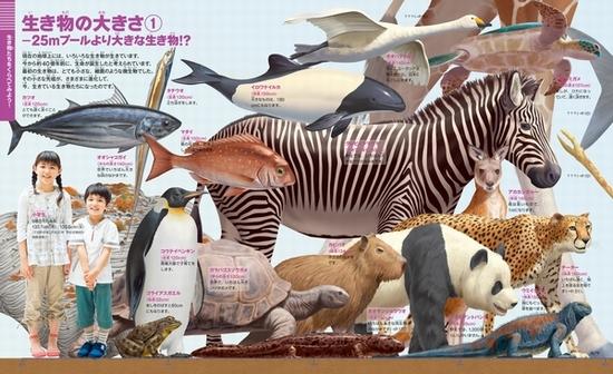 小学館の図鑑NEO+ぷらす くらべる図鑑