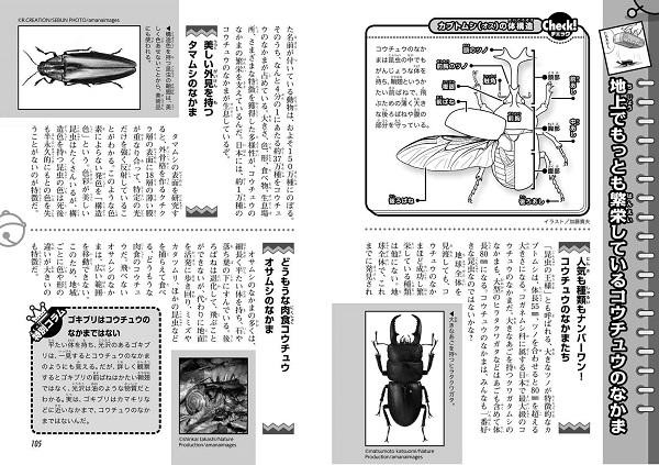 ドラえもん科学ワールド 昆虫の不思議
