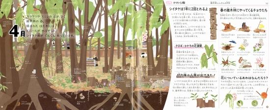 雑木林の一年