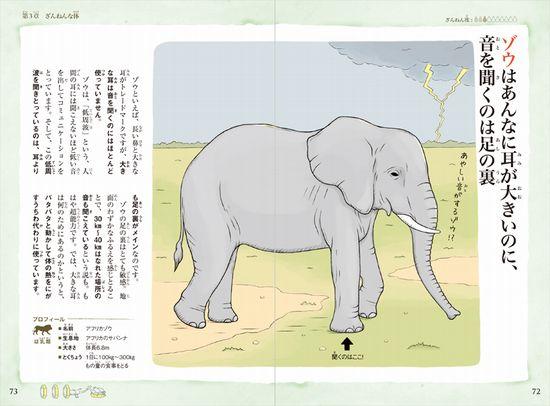 おもしろい!進化のふしぎ 続々ざんねんないきもの事典
