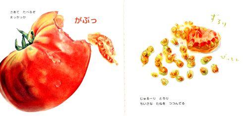 まっかっか トマト