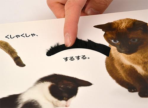 CAT ねこ ネコ こねこ ね!