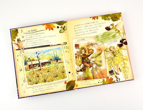 フラワー・フェアリーズの日記 妖精の冬の家