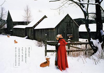 ターシャ・テューダー 最後のことば ラスト・インタビュー「人生の冬が来たら」