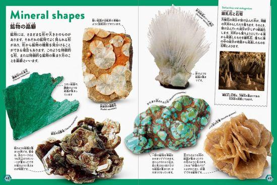 これだけは知っておきたい 岩石・鉱物図鑑