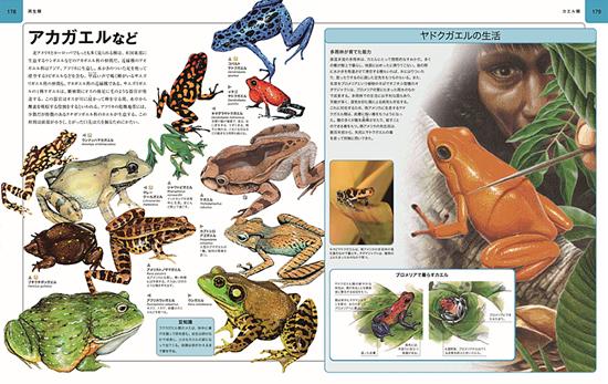 ビジュアル 地球大図鑑+動物大図鑑 2冊セット