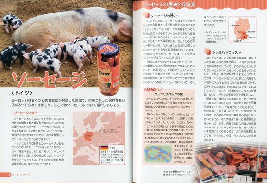 世界の保存食 4 肉の保存食