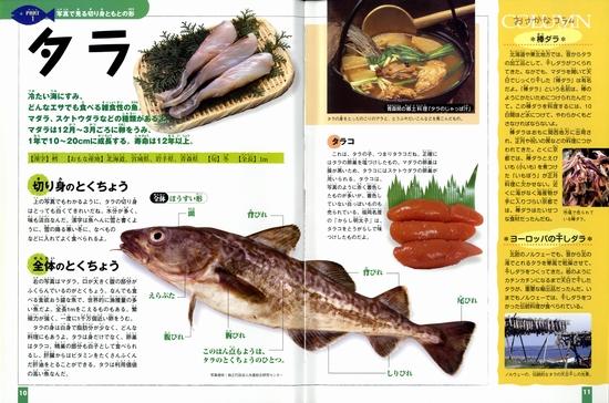 切り身の図鑑(1) 魚