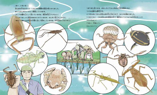 田んぼの昆虫たんけん隊