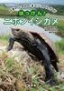 日本のいきものビジュアルガイド はっけん! ニホンイシガメ
